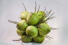 todavía fruta del coco de la carne de la vida Imagen de archivo