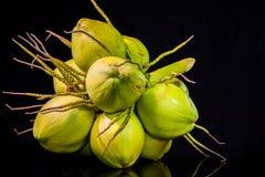 todavía fruta del coco de la carne de la vida Fotografía de archivo libre de regalías