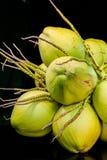 todavía fruta del coco de la carne de la vida Foto de archivo