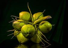todavía fruta del coco de la carne de la vida Fotografía de archivo