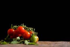 Todavía grupo de la vida de tomate en la madera vieja Foto de archivo
