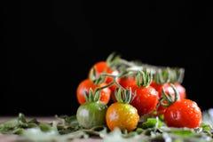 Todavía grupo de la vida de tomate en la madera vieja Fotos de archivo libres de regalías