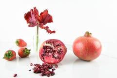 Todavía imagen de la vida con las frutas y el tulipán rojos Fotografía de archivo