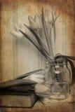 Todavía imagen de la vida de las flores de la primavera con el filtro e de la textura del vintage Fotografía de archivo