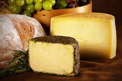 Todavía imagen de la vida del queso natural Fotografía de archivo
