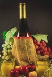 Todavía la vida colorea la información del vino verde y púrpura de la uva Imagen de archivo libre de regalías