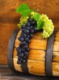 Todavía la vida con el barril adornó las uvas rojas y blancas Imagen de archivo