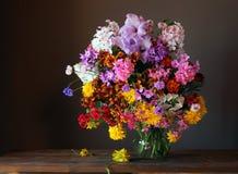 Todavía la vida con un ramo de jardín florece Foto de archivo libre de regalías