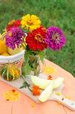 Todavía la vida con un ramo de zinnia florece Foto de archivo libre de regalías