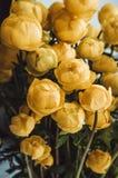 Todavía la vida con un ramo fresco del verano de rosas amarillas florece en fondo oscuro Decoración rústica casera acogedora del  Fotografía de archivo