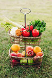 Todavía la vida de verduras coloridas maduras y las frutas en cesta atormentan afuera en hierba Fotos de archivo