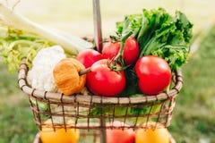 Todavía la vida de verduras coloridas maduras y las frutas en cesta atormentan afuera en hierba Fotografía de archivo