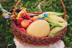 Todavía la vida de verduras coloridas maduras y las frutas en cesta atormentan afuera en hierba Imagen de archivo libre de regalías
