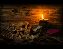 Todavía la vida del cráneo con los champiñones secados de la hoja seca y la vela se encienden Imágenes de archivo libres de regalías