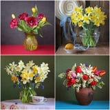 Todavía lifes con los ramos de narcisos y de tulipanes Imagenes de archivo