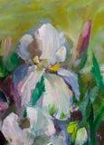 Todavía pintura de textura de la pintura al óleo de la vida, impresionismo a de los iris Imagenes de archivo
