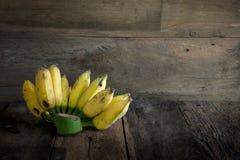 Todavía plátano, papaya, mango y lechuga del jardín del patio trasero de la vida Fotos de archivo libres de regalías