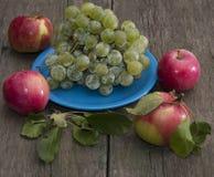 Todavía placa de la vida de uvas y de cuatro manzanas Fotografía de archivo