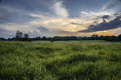 Todavía puesta del sol del prado Imagen de archivo libre de regalías