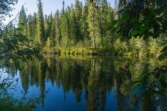 Todavía río Foto de archivo libre de regalías