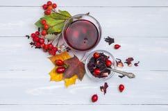Todavía taza de la vida de té de la fruta en las hojas de otoño Fotos de archivo