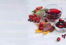 Todavía taza de la vida de té de la fruta en las hojas de otoño y los vagos de madera del vintage Fotos de archivo libres de regalías