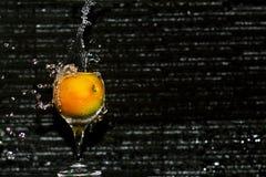 Todavía tomate de Fallin de la vida Fotos de archivo