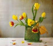 Todavía tulipanes del amarillo del ramo de la vida Fotos de archivo libres de regalías