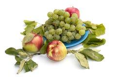Todavía uvas de la vida en una placa azul, manzanas y hojas Fotografía de archivo libre de regalías