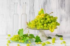 Todavía uvas de vino del bottlle de la fruta de la vida Imágenes de archivo libres de regalías