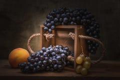 Todavía uvas naturales de la vida Imágenes de archivo libres de regalías