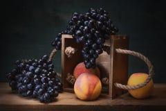 Todavía uvas naturales de la vida Imagen de archivo
