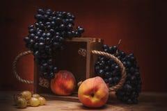Todavía uvas naturales de la vida Imagenes de archivo