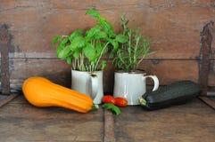 Todavía verduras de la vida. Imágenes de archivo libres de regalías