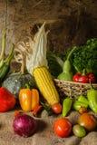 Todavía verduras, hierbas y fruta de la vida. Fotografía de archivo