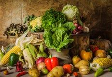 Todavía verduras, hierbas y fruta de la vida. Foto de archivo