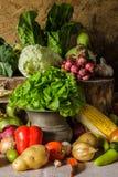 Todavía verduras, hierbas y fruta de la vida. Fotos de archivo libres de regalías