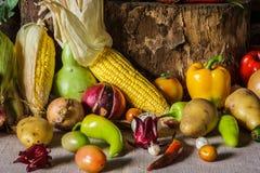Todavía verduras, hierbas y fruta de la vida. Imagen de archivo libre de regalías