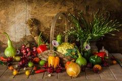 Todavía verduras, hierbas y fruta de la vida. Fotos de archivo