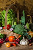 Todavía verduras, hierbas y fruta de la vida. Imágenes de archivo libres de regalías