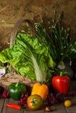 Todavía verduras, hierbas y fruta de la vida Imagen de archivo libre de regalías