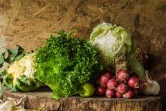Todavía verduras, hierbas y fruta de la vida Imágenes de archivo libres de regalías