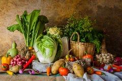 Todavía verduras, hierbas y frutas de la vida Imagenes de archivo