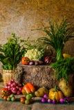 Todavía verduras, hierbas y frutas de la vida Imagen de archivo libre de regalías