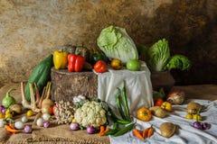 Todavía verduras, hierbas y frutas de la vida Foto de archivo libre de regalías