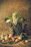 Todavía verduras, hierbas y frutas de la vida Fotos de archivo