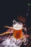 Todavía vida con de la cerveza y de la cerveza de barril con hielo por el vidrio Imagen de archivo libre de regalías