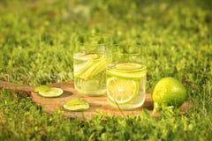Todavía vida con dos vidrios de la bebida de restauración de una cal Foto de archivo libre de regalías