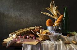 Todavía vida con el cocinero Fotos de archivo libres de regalías