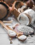 todavía vida con el coco y las escamas Imagen de archivo libre de regalías